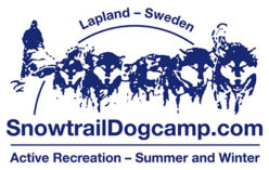 Snow Trail Dog Camp